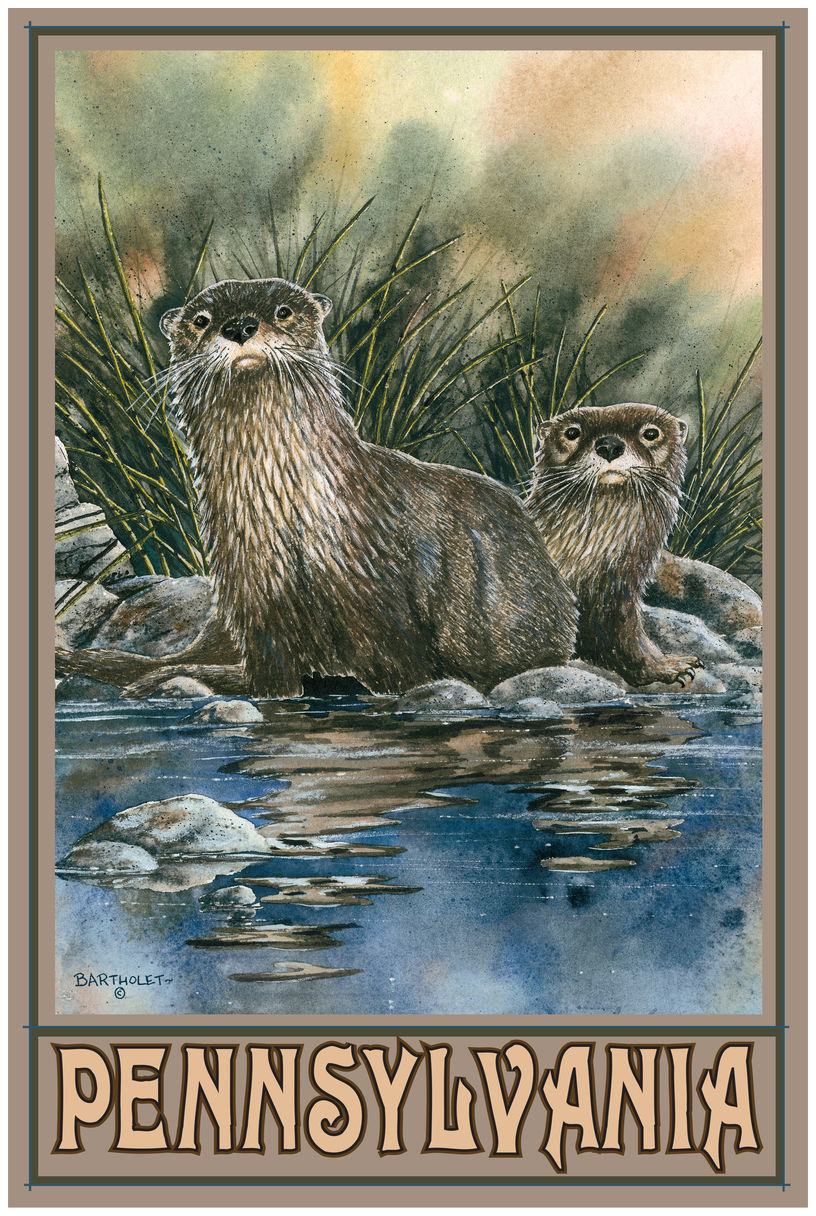 Pennsylvania Otters Drawing & Painting Otters Giclee Art Print Poster by Dave Bartholet