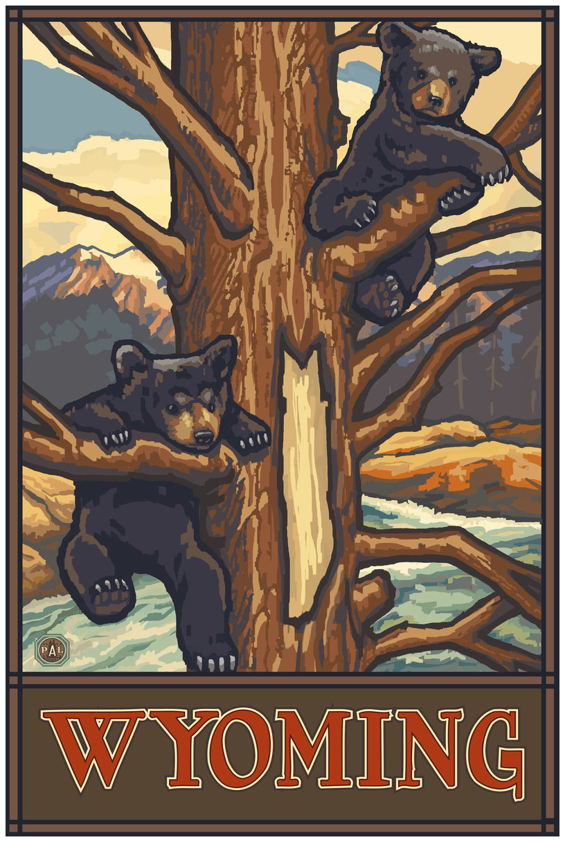 Wyoming Two Bear Cubs Giclee Art Print Poster by Paul A. Lanquist