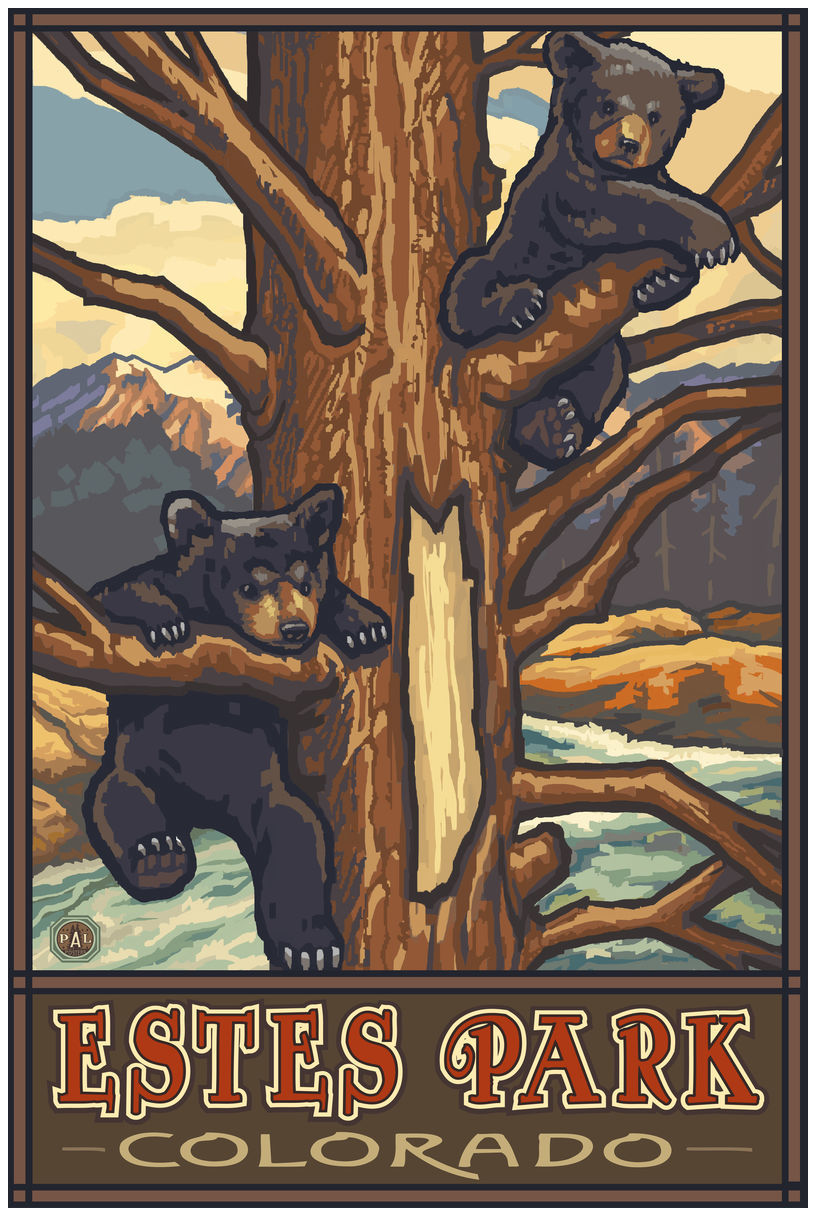 Estes Park Colorado Two Bear Cubs Giclee Art Print Poster by Paul A. Lanquist