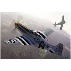 North American P-51 Mustang Planes