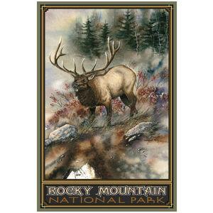 Rocky Mountain National Park Ridge Runner Elk