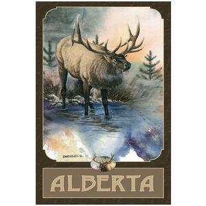 Alberta Canada Bull Elk