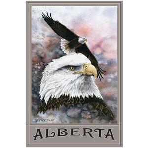 Alberta Canada Bald Eagle