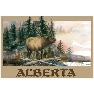 Alberta Canada Elk