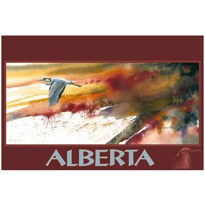 Alberta Canada Heron
