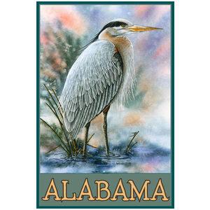 Alabama Blue Heron