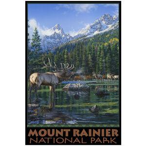 Mount Rainier National Park Elk