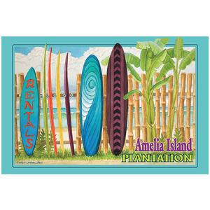Amelia Island Florida Surfboard Rental