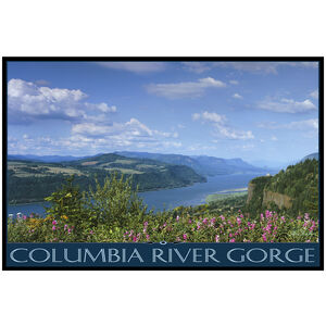 Columbia River Gorge Gorge View