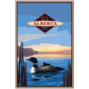 Alberta Canada Loon