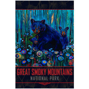Great Smoky Mountains Black Bear Haven