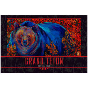 Grand Teton Lone Grizzly Bear