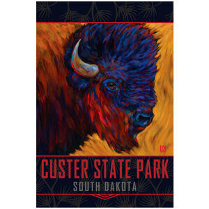 """Custer State Park """"Red Beard"""" Bison"""