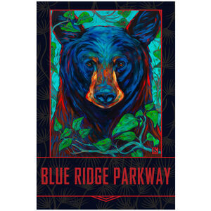 Blue Ridge Parkway Black Bear