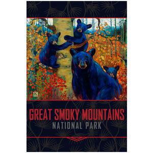 Great Smoky Mountains Bear Family Tree