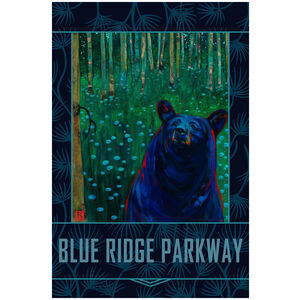 Blue Ridge Parkway Black Bear Reverie