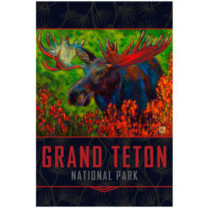 Grand Teton Autumn Moose