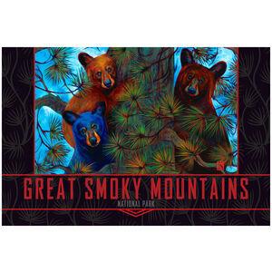Great Smoky Mountains Bear Tree Trio