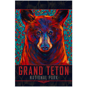 Grand Teton Cinnamon Bear
