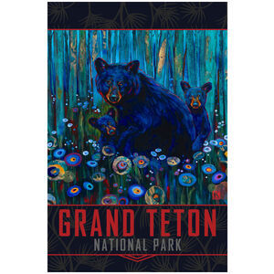 Grand Teton National Park Bear Haven