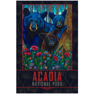 Acadia National Park Bear Trio