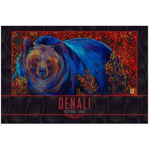 Denali National Park Alaska Brown Bear