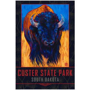 Custer State Park South Dakota Lone Bison