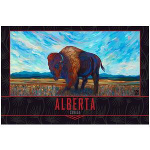 Alberta Canada Open Range Bison