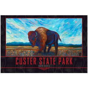 Custer State Park South Dakota Open Range Bison