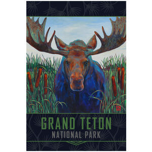 Grand Teton National Park Bull Moose