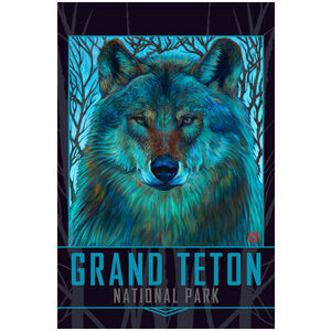 Grand Teton National Park Winter Wolf