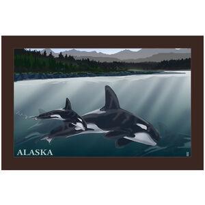 Alaska Orca Pod Alaska