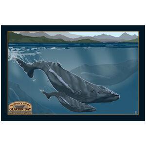 Glacier Bay National Park Humpback Whale