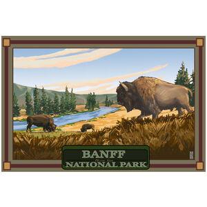 Banff National Park Field Of Bison
