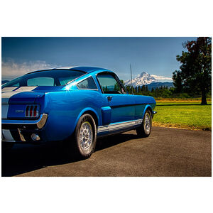 1966 Shelby GT