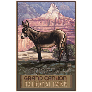 Grand Canyon National Park Burro