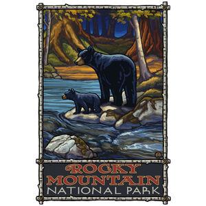 Rocky Mountain National Park Bears In Stream