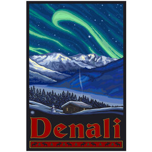 Denali Alaska Northern Lights
