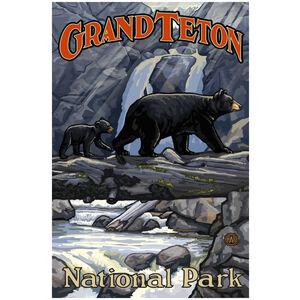 Grand Teton National Park Bears On Log