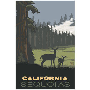 California Sequoias