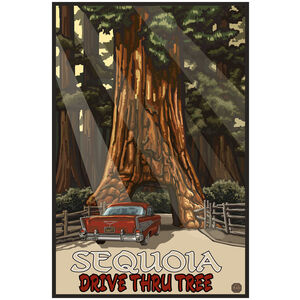 CTT Sequoia Drive Thru Tree
