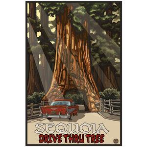 CTT Sequoia Drive Thru Tree