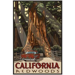 California Redwoods Car Thru Tree