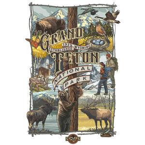 Grand Teton National Park Collage