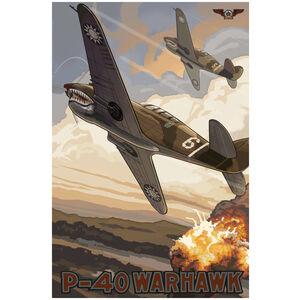 40 Warhawk