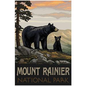 Mount Rainier National Park Black Bear Family