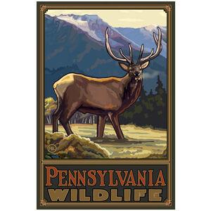 Pennsylvania Elk Giclee Art Print Poster by Paul A. Lanquist
