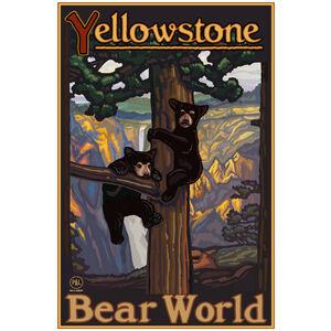 Yellowstone Bear World Bear Cubs