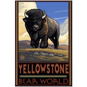 Yellowstone Bear World Buffalo
