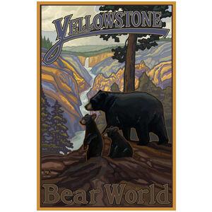 Yellowstone Bear World Black Bear & Cubs